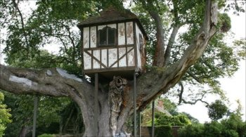 The tree-house at Pitchford Hall.